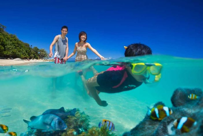 Snorkelling Fitzroy Island