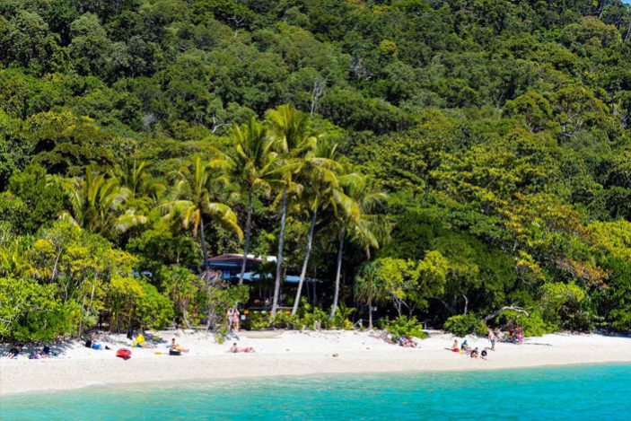 easter-fitzroy-island