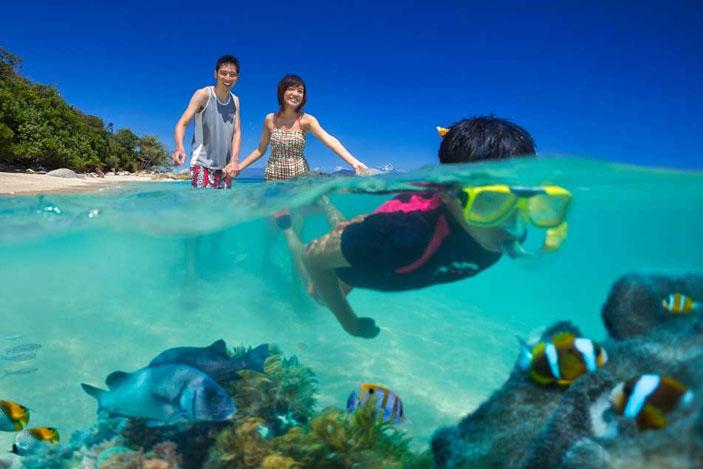 Great Barrier Reef Snorkelling Fitzroy Island