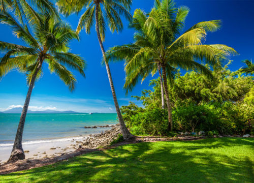 Cairns-Vs-Port-Douglas-What-to-See-and-Do-and-Where