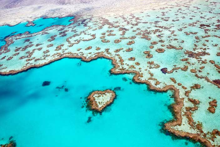 Great-Barrier-Reef-Tours