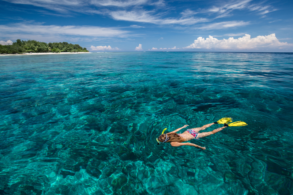 Top Ten Activities To Do On Fitzroy Island On A Budget Snorkelling On The Great Barrier Reef