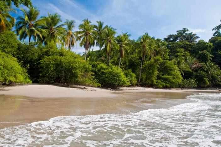 Beautiful Rainforest Beachside Locations In Queensland