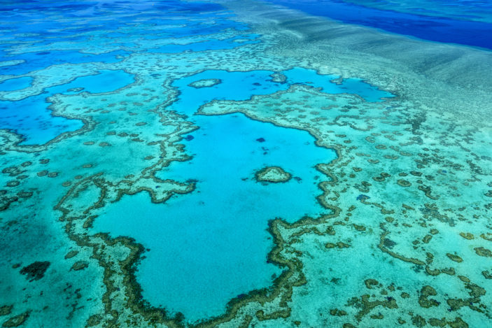 The Great Barrier Reef - Frequently Asked Questions