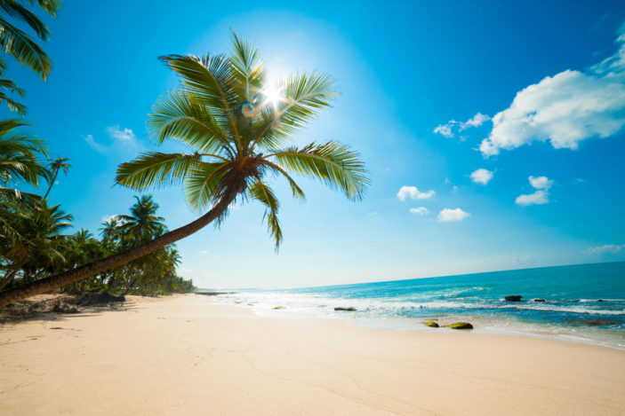 What is the Best Time of Year to Visit Cairns