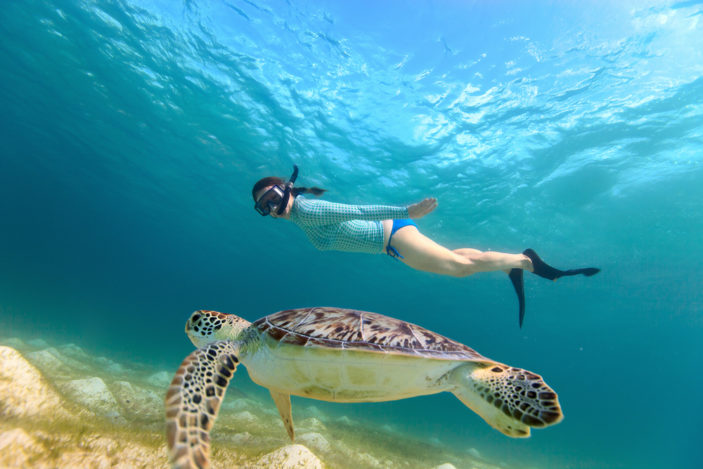 Snorkelling the Great Barrier Reef - Why You Can't Beat Fitzroy Island