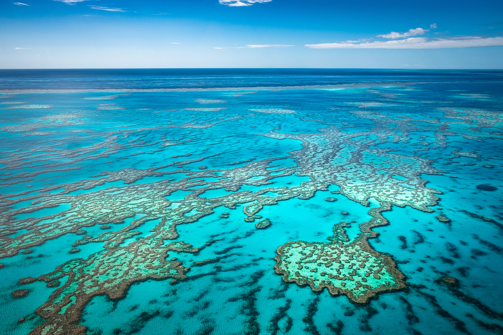 Best Ways to See and Experience the Great Barrier Reef