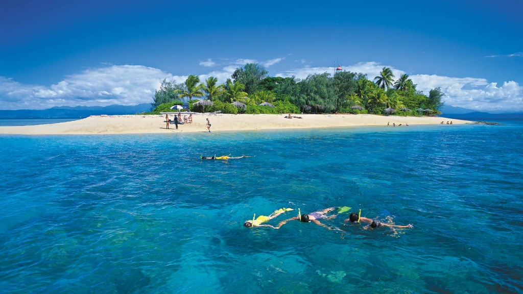 Amazing Island Snorkelling Locations on the Great Barrier Reef Low Isles