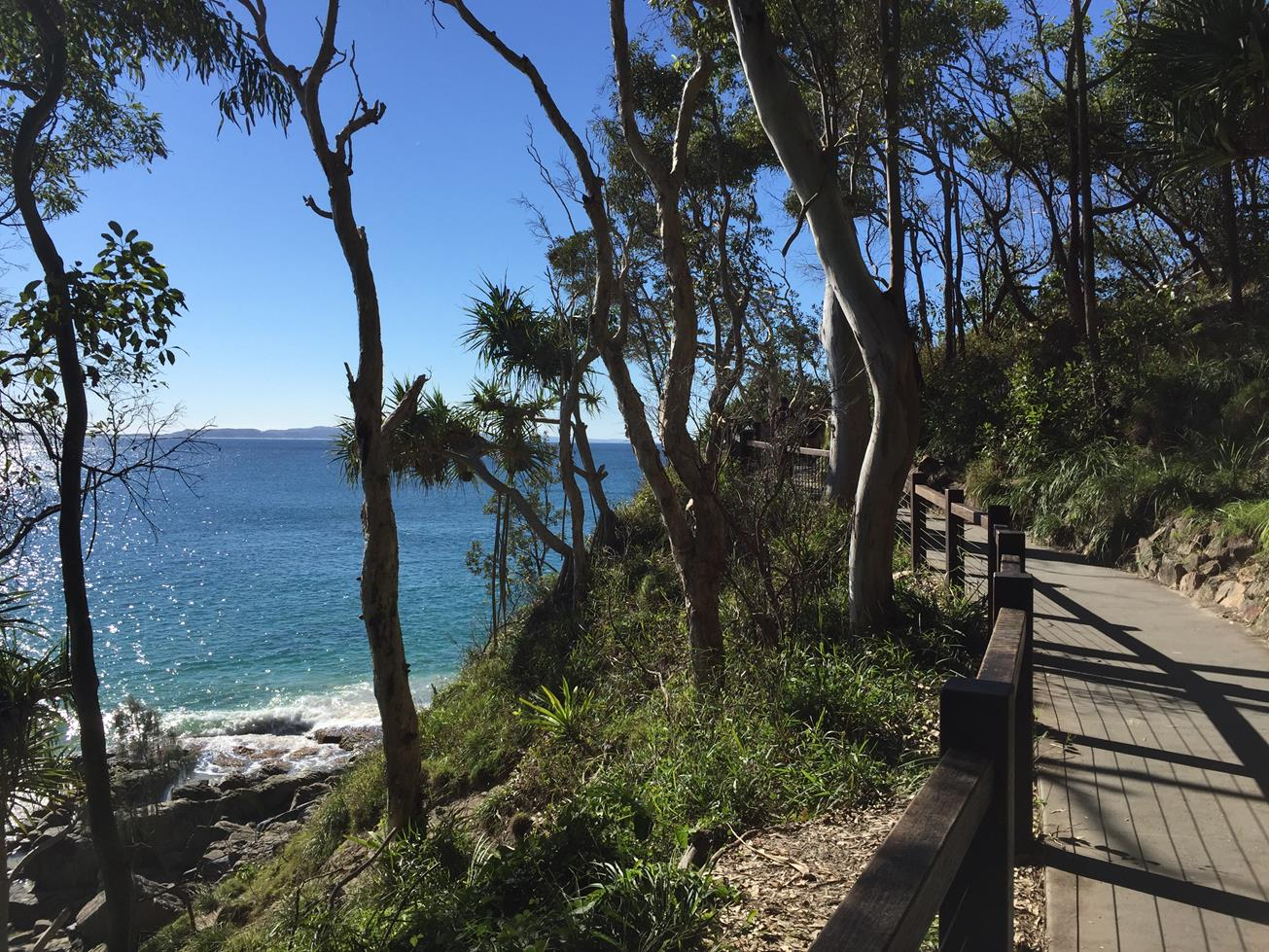 Four Spectacular Queensland Beaches You Simply Cannot Miss Noosa Main Beach