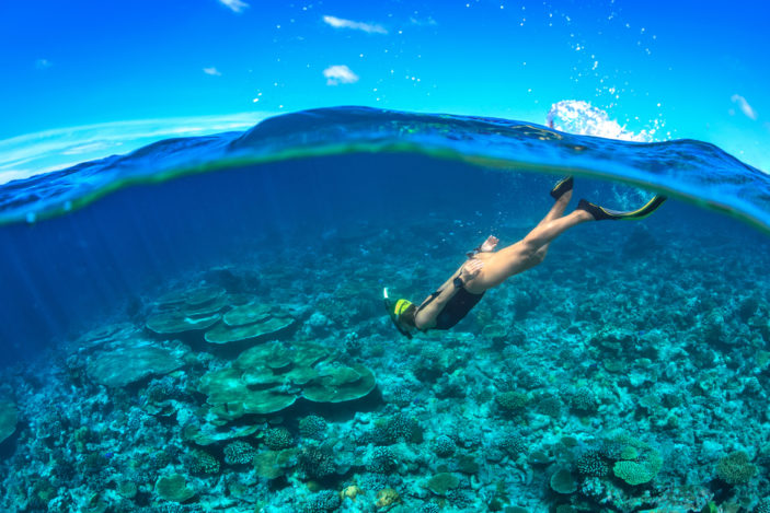 Three Sensational Snorkelling Spots Near Cairns