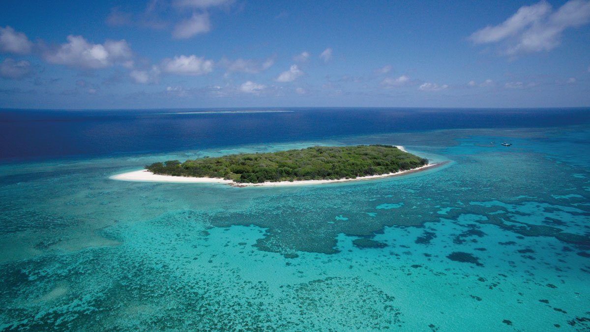 Best Tropical Island Camping Locations on the Great Barrier Reef Lady Musgrave Island
