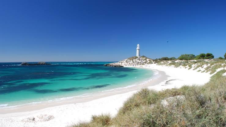 Three Amazing Australian Islands That Should Be on Your Bucket List Rottnest Island, Western Australia