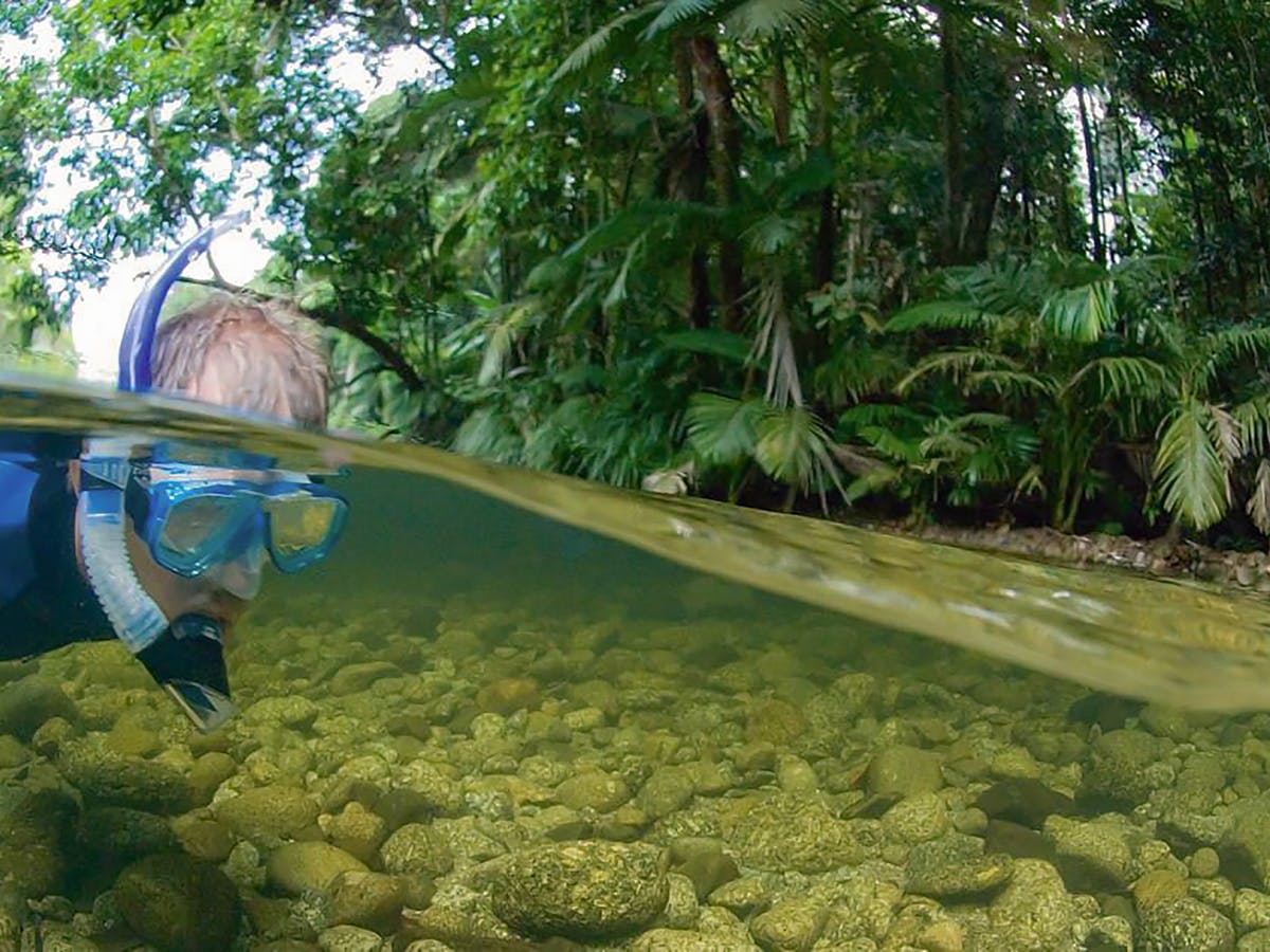 Eight Spectacular Snorkelling Spots on Australia's East Coast Mossman River
