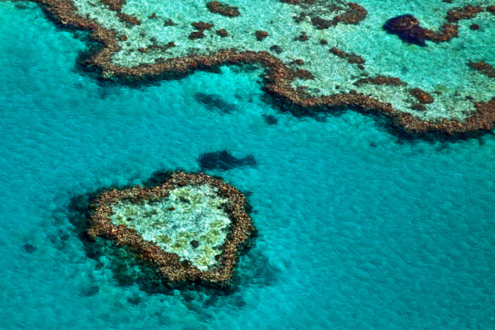 10 Reasons Why You Must Visit Queensland's Great Barrier Reef