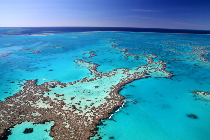 Four Reasons Why Tropical Far North Queensland is a Must-see Destination